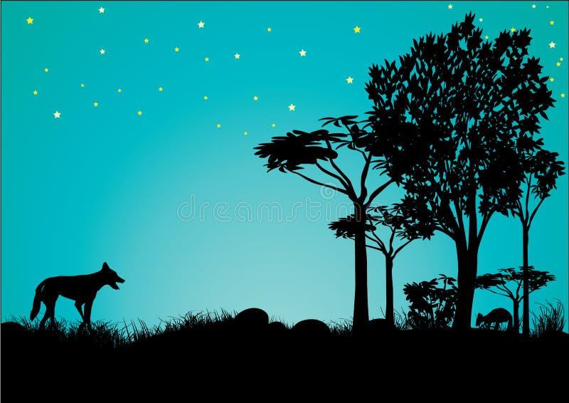 Σκιαγραφία του dingo και του καγκουρό με το μπλε ουρανό και τα αστέρια ελεύθερη απεικόνιση δικαιώματος
