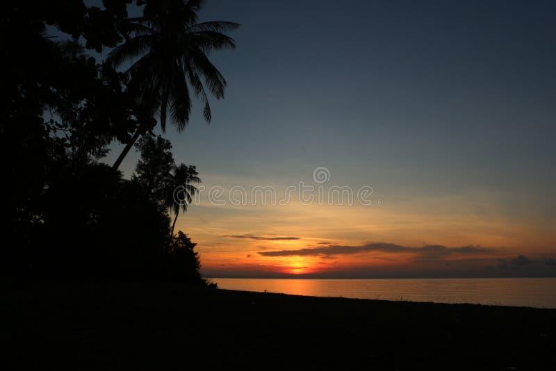 Σκιαγραφία των δέντρων και του ηλιοβασιλέματος στη θάλασσα στοκ φωτογραφίες