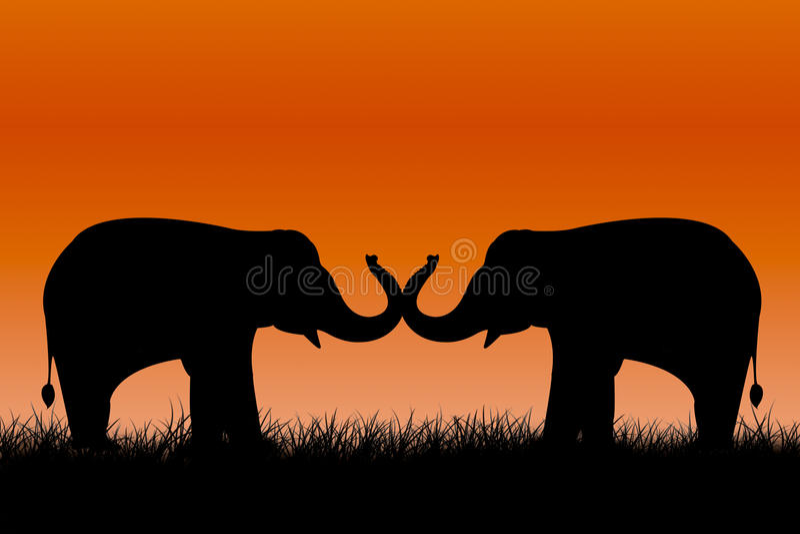 Σκιαγραφίες ελεφάντων στοκ φωτογραφίες