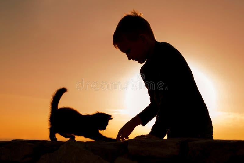 Σκιαγραφίες του παίζοντας παιδιού και του γατακιού ενάντια στον ουρανό ηλιοβασιλέματος Φωτογραφία διασκέδασης Επικοινωνία με τα ζ στοκ εικόνες με δικαίωμα ελεύθερης χρήσης