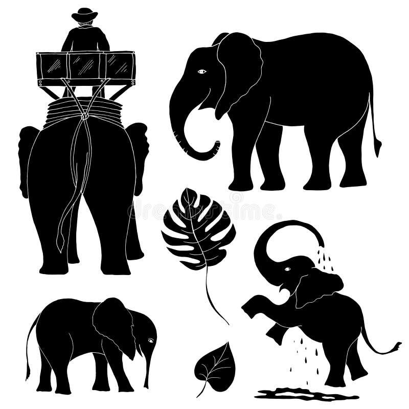 Σκιαγραφίες των ελεφάντων για το διαφορετικό σχέδιο απεικόνιση αποθεμάτων