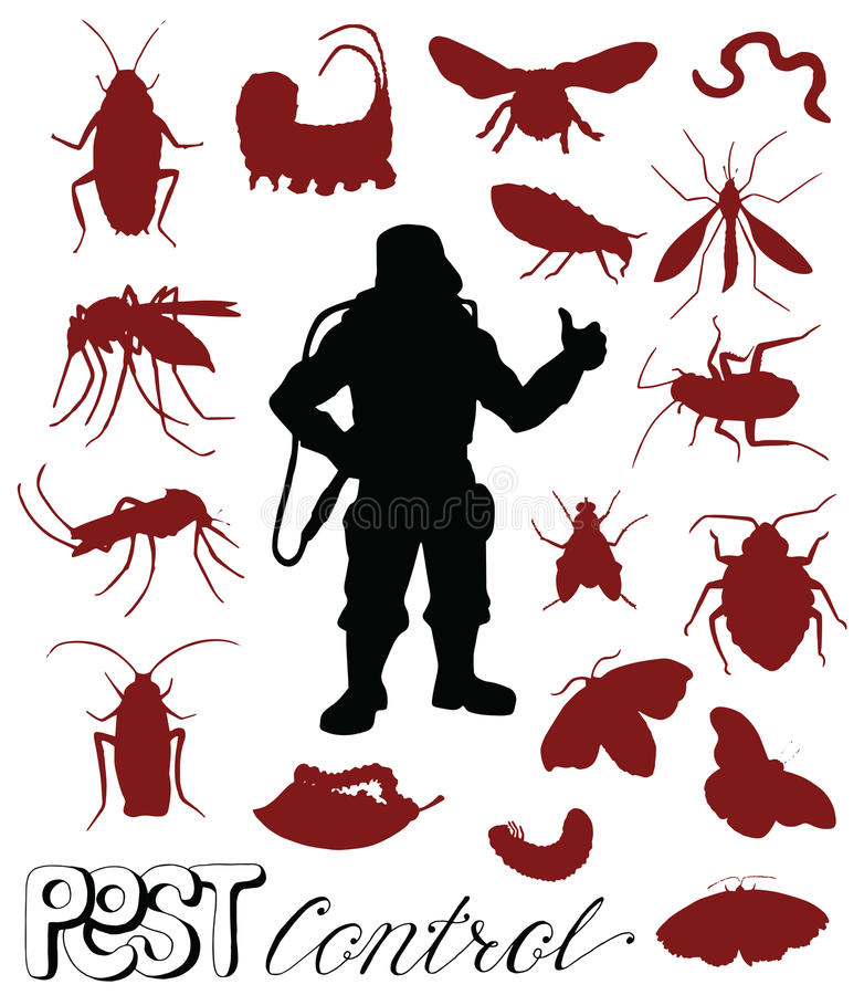 Σκιαγραφίες των εντόμων παρασίτων και του ατόμου εξολοθρευτών διανυσματική απεικόνιση
