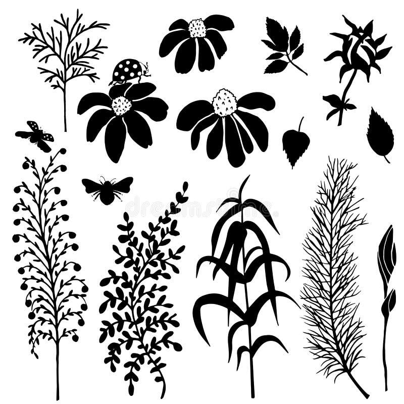 Σκιαγραφίες των λουλουδιών για το διαφορετικό σχέδιο απεικόνιση αποθεμάτων