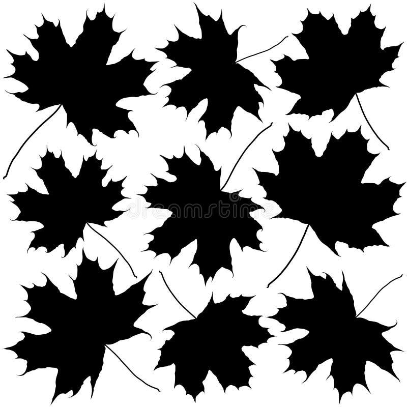 Σκιαγραφίες των φύλλων σφενδάμου διανυσματική απεικόνιση