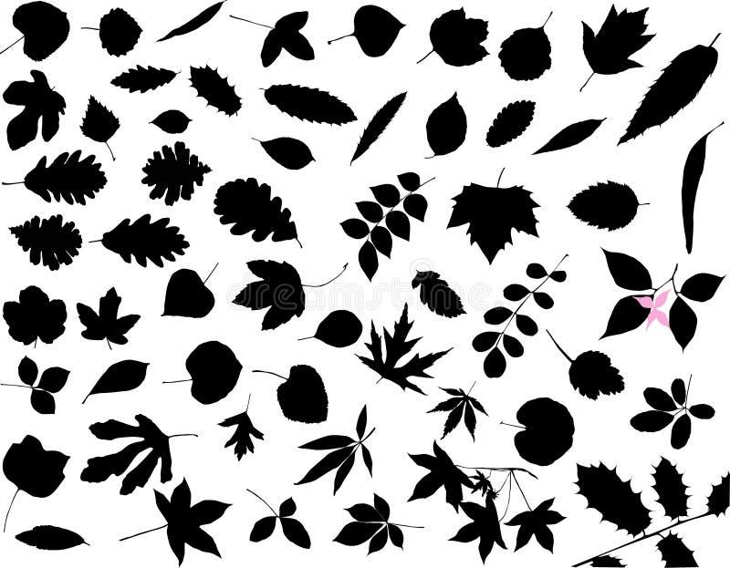 σκιαγραφίες φύλλων διανυσματική απεικόνιση