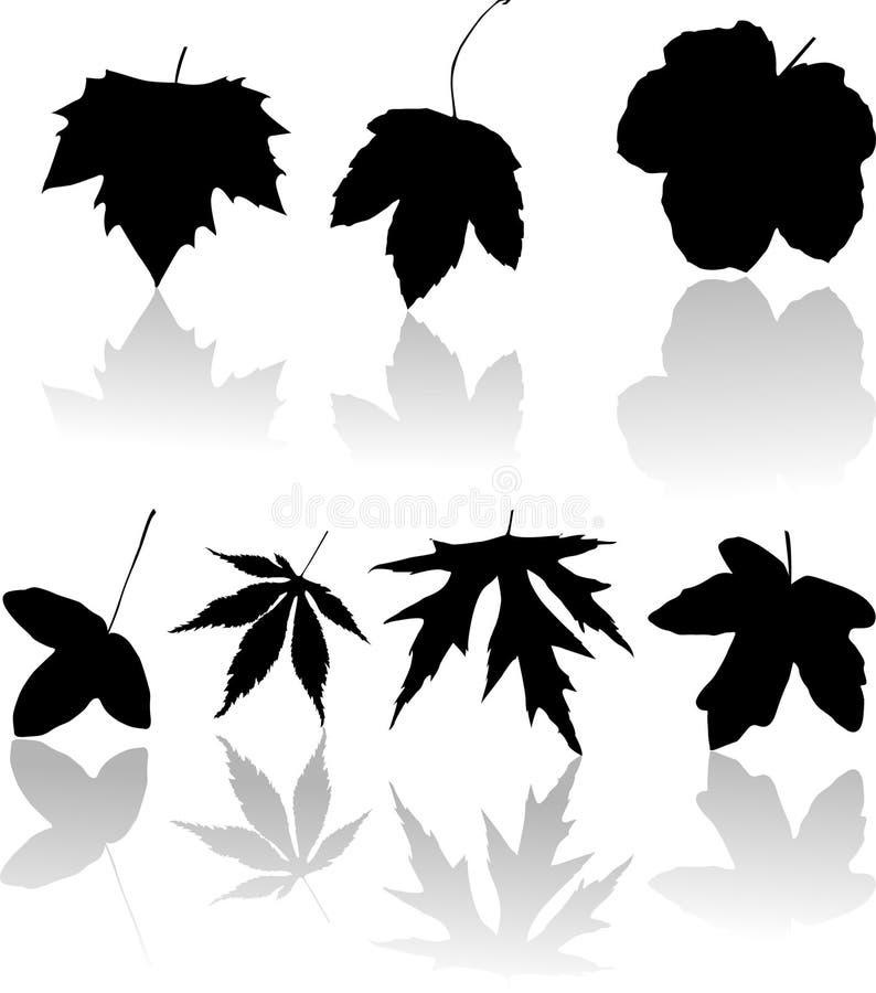 σκιαγραφίες φύλλων απεικόνιση αποθεμάτων
