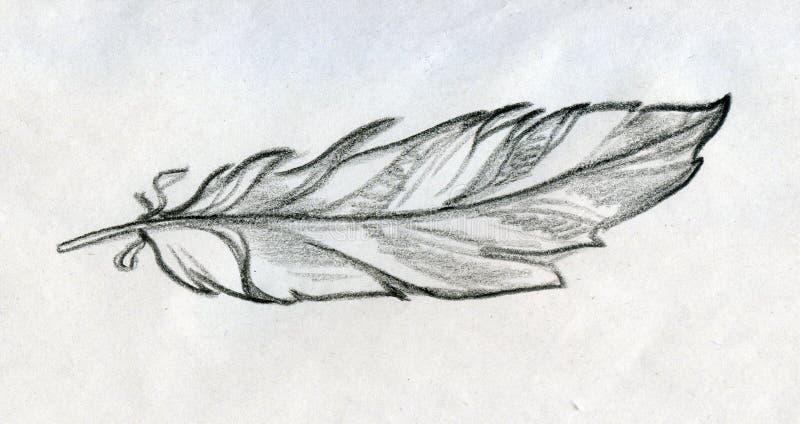 Σκιαγραφημένο φτερό ελεύθερη απεικόνιση δικαιώματος