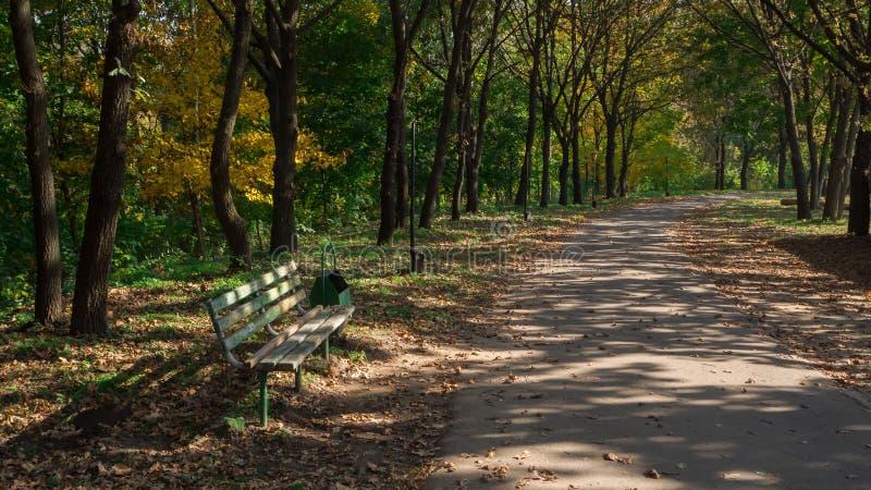 Σκιερή αλέα με έναν πάγκο σε ένα ηλιόλουστο πάρκο φθινοπώρου στοκ εικόνα