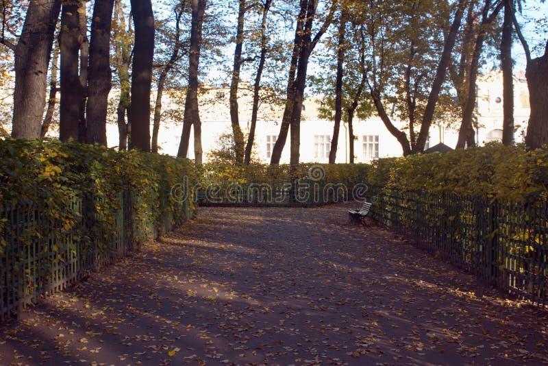Σκιερή αλέα στο πάρκο φθινοπώρου οριζόντιος στοκ εικόνα