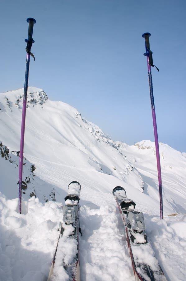 σκι πόλων skie στοκ εικόνα