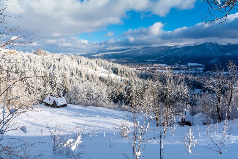 Σκι στο τεράστιο βουνό με χιόνι κατά τη διάρκεια του χειμώνα, Πολωνία και Τσεχική Δημοκρατία στοκ εικόνα με δικαίωμα ελεύθερης χρήσης