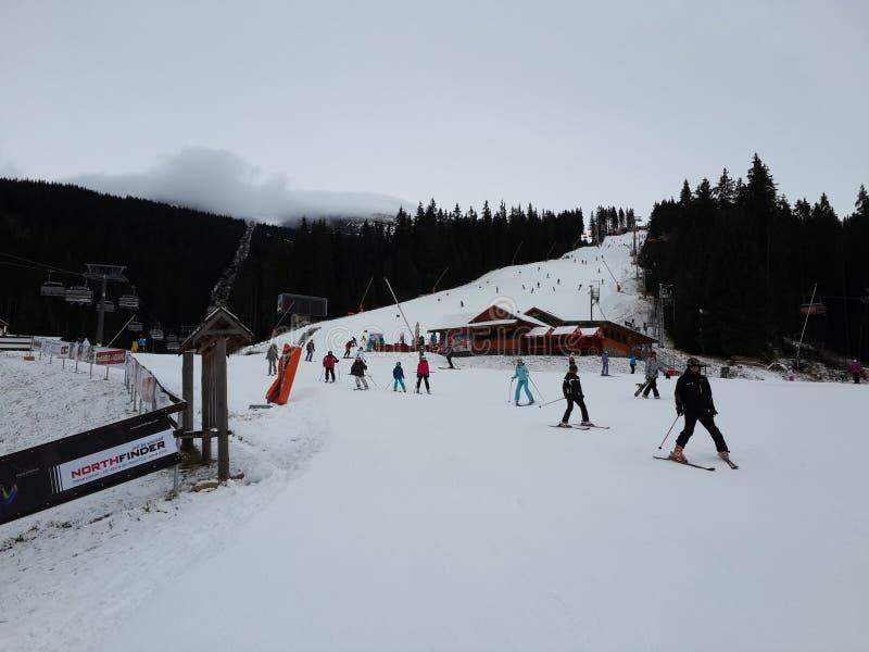σκι στοκ εικόνα