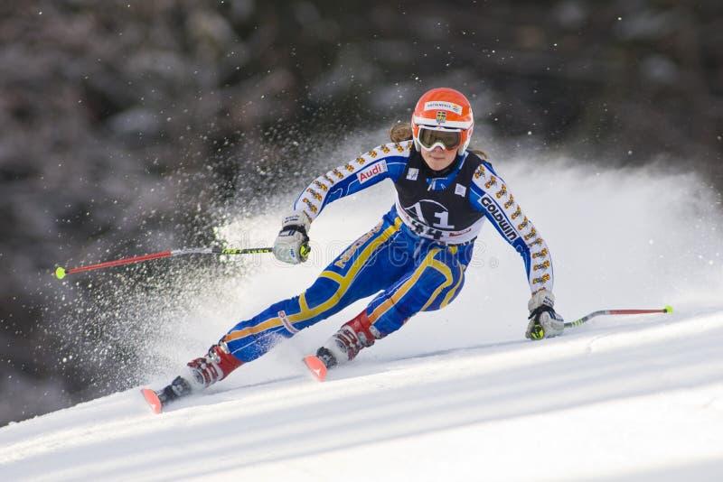 ΣΚΙ: Lienz γιγαντιαίο Slalom στοκ φωτογραφία