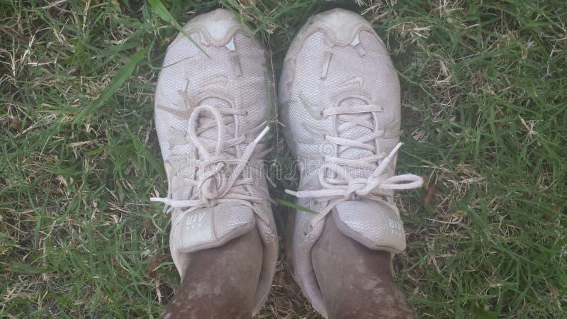 Σκονισμένα πάνινα παπούτσια στοκ φωτογραφίες