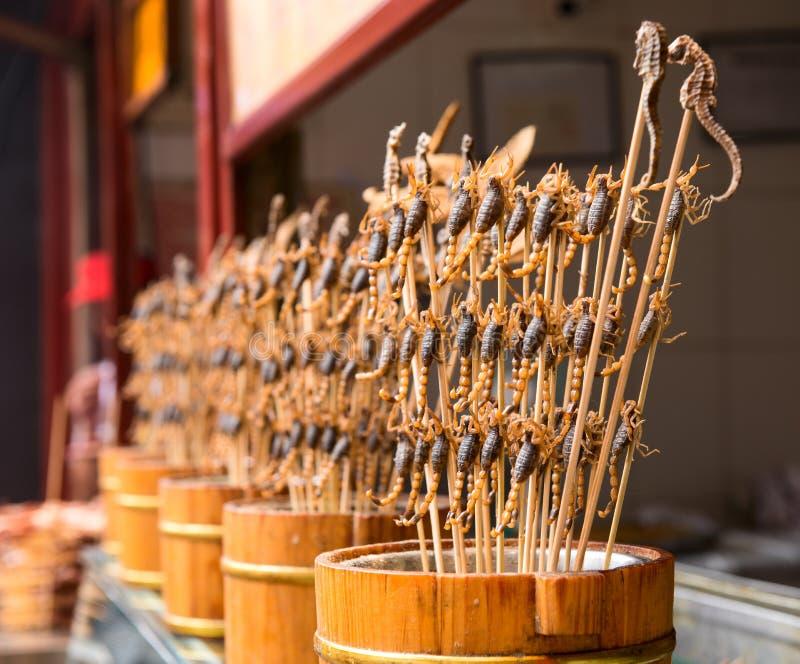 Σκορπιοί σε ένα ραβδί στοκ φωτογραφία με δικαίωμα ελεύθερης χρήσης