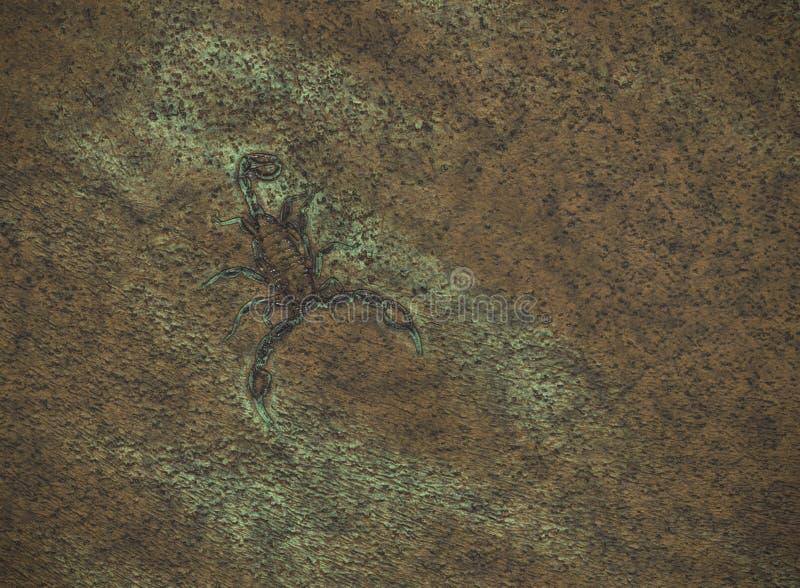 σκορπιός διανυσματική απεικόνιση