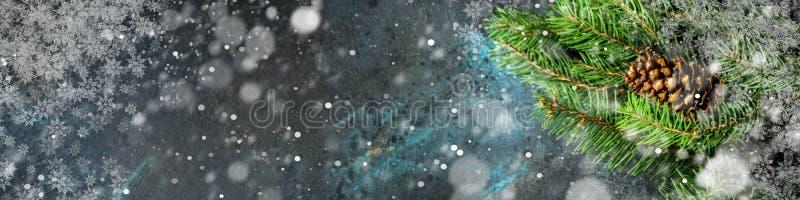 σκοτάδι Χριστουγέννων αν&a στοκ φωτογραφία με δικαίωμα ελεύθερης χρήσης