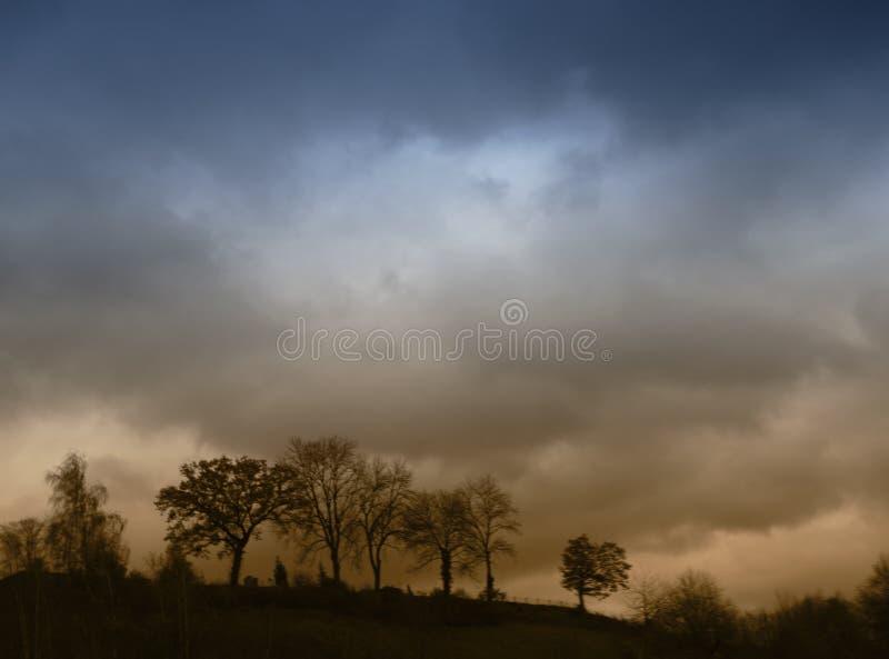 σκοτεινή φύση θυελλώδης στοκ εικόνες