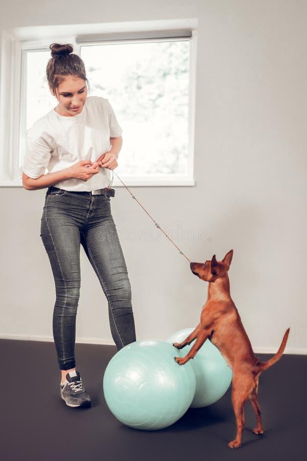 Σκοτεινός-μαλλιαρή γυναίκα που φορά τα τζιν που παίζουν με το χαριτωμένο σκυλί στοκ εικόνες