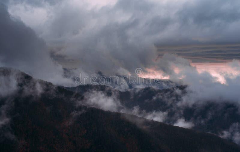 Σκοτεινός ουρανός σύννεφων δέντρων από την Τοσκάνη στοκ φωτογραφία με δικαίωμα ελεύθερης χρήσης