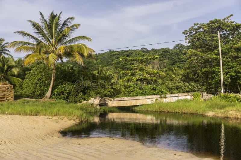 Σκοτεινός χρωματισμένος ποταμός κοντά στην παραλία στοκ φωτογραφίες με δικαίωμα ελεύθερης χρήσης