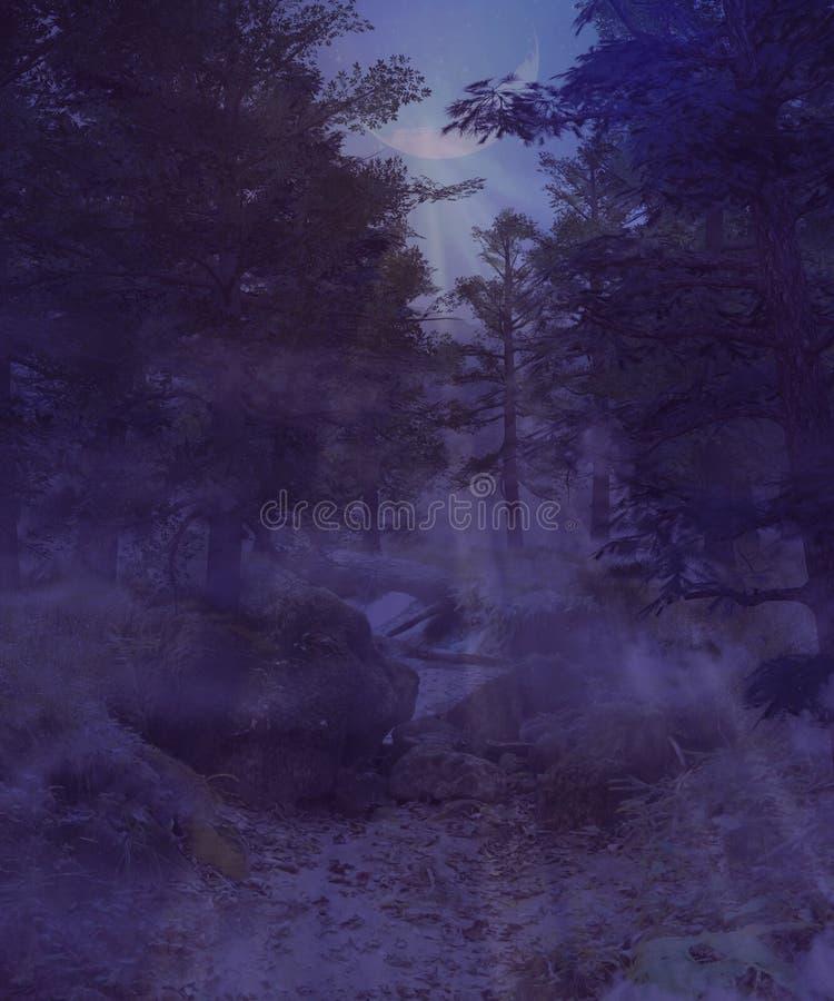Σκοτεινό ομιχλώδες δάσος ελεύθερη απεικόνιση δικαιώματος
