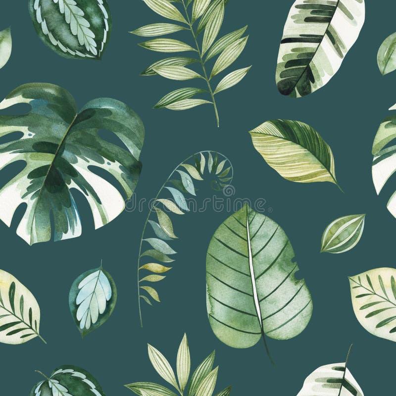 Σκοτεινό υπόβαθρο με τα πράσινα φύλλα, κλάδοι, φύλλο φοινικών απεικόνιση αποθεμάτων