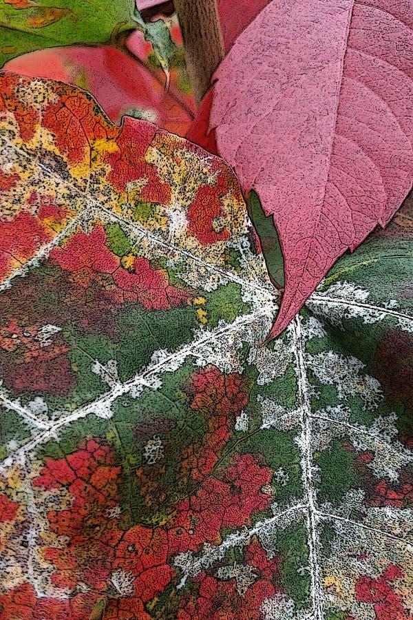 Σκουριά του φθινοπώρου στοκ εικόνα