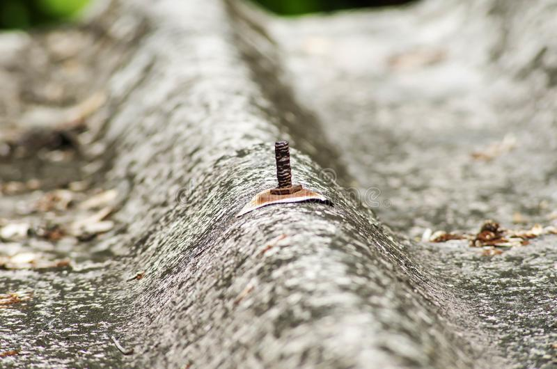 Σκουριασμένο καρύδι στεγών κεραμιδιών στη στέγη σπιτιών διανυσματική απεικόνιση