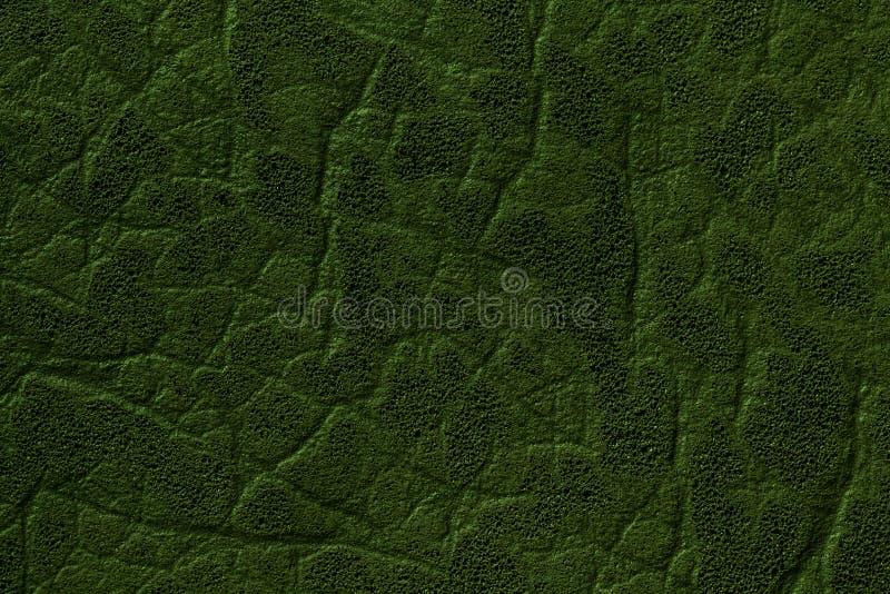 Σκούρο πράσινο υπόβαθρο τεχνητού δέρματος με τη σύσταση και το σχέδιο, κινηματογράφηση σε πρώτο πλάνο στοκ φωτογραφίες με δικαίωμα ελεύθερης χρήσης