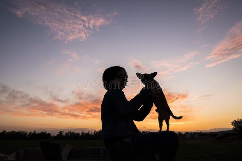 Σκυλί γυναικών σκιαγραφιών στοκ φωτογραφία