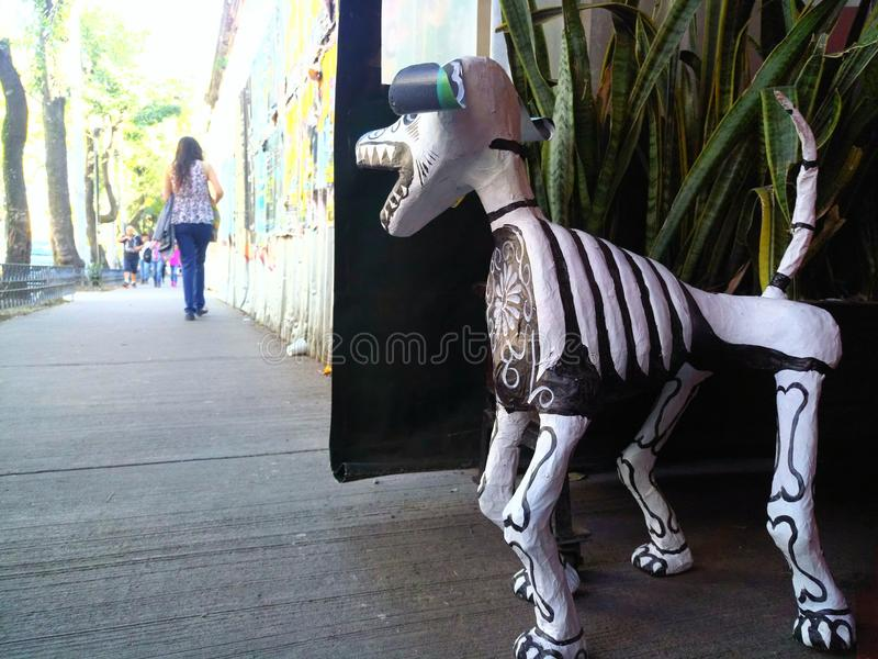 Σκυλί κρανίων στοκ εικόνες με δικαίωμα ελεύθερης χρήσης