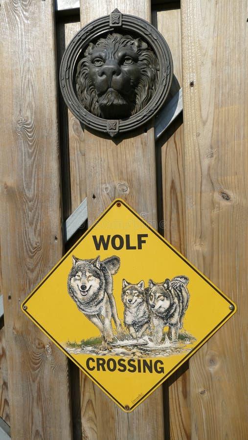 Σκυλί λύκων που διασχίζει το πιάτο και επάνω από ένα λιοντάρι doorknocker στοκ φωτογραφίες