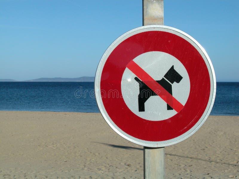 σκυλί παραλιών κανένα σημά&delta στοκ φωτογραφίες με δικαίωμα ελεύθερης χρήσης