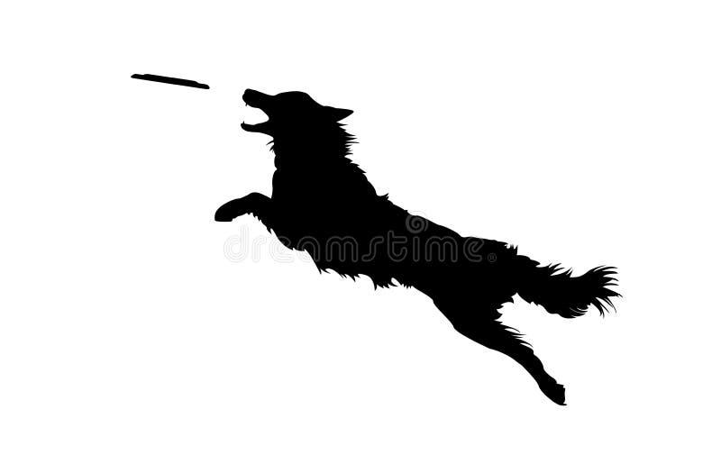 Σκυλί που πηδά και που πιάνει το δίσκο στοκ φωτογραφίες
