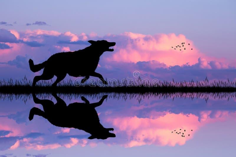 Σκυλί που τρέχει στο ηλιοβασίλεμα ελεύθερη απεικόνιση δικαιώματος
