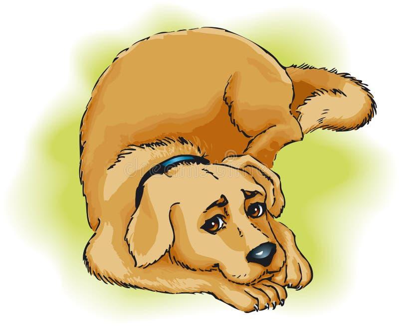 Download σκυλί διανυσματική απεικόνιση. εικονογραφία από φιλία - 13177893