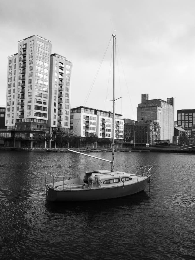 Σκυλί sailboat στοκ εικόνα