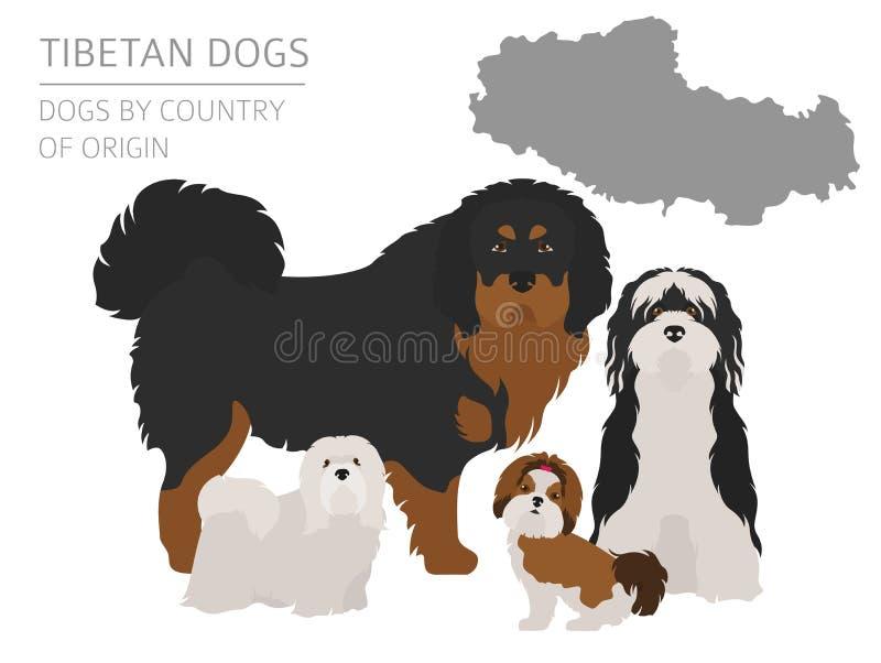 Σκυλιά από τη χώρα προέλευσης Θιβετιανές φυλές σκυλιών, κινεζικό βουνό διανυσματική απεικόνιση