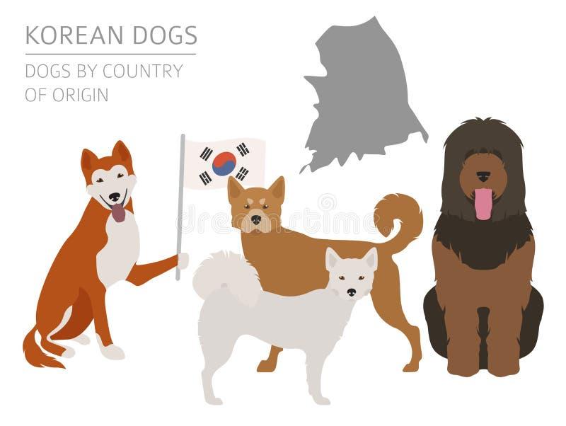 Σκυλιά από τη χώρα προέλευσης Κορεατικές φυλές σκυλιών Templa Infographic ελεύθερη απεικόνιση δικαιώματος