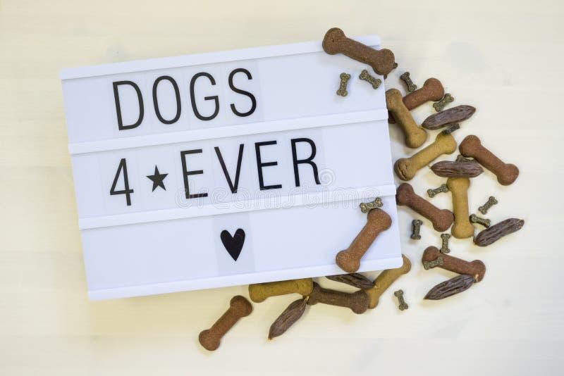 Σκυλιά κειμένων για γραπτός πάντα σε ένα lightbox στοκ φωτογραφία