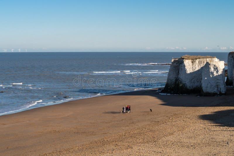 Σκυλιά οικογενειακού περπατήματος στην παραλία στον κόλπο βοτανικής, Κεντ, UK στοκ εικόνες