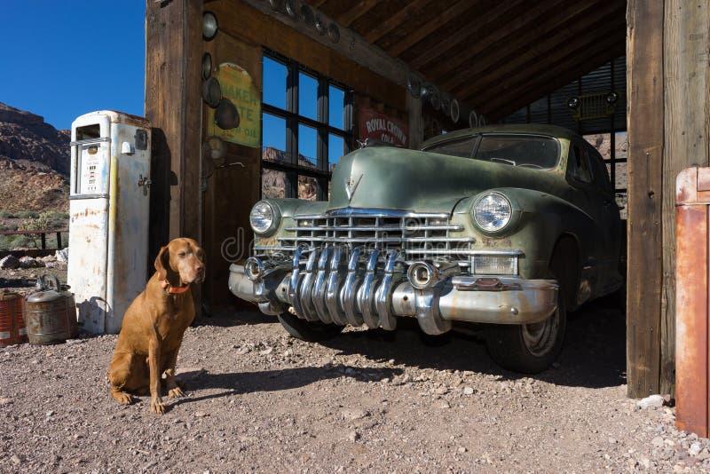Σκυλί και εκλεκτής ποιότητας αυτοκίνητο στοκ φωτογραφία