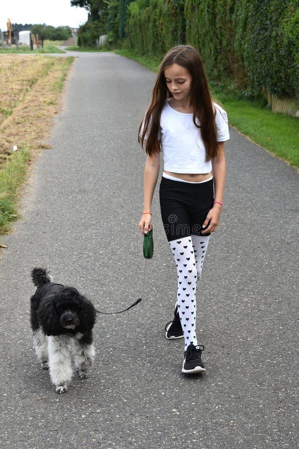 Σκυλί κοριτσιών και poodle στοκ εικόνες