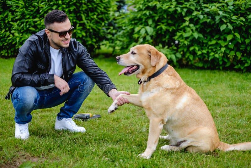 Σκυλί που δίνει το πόδι στον ιδιοκτήτη στοκ φωτογραφίες