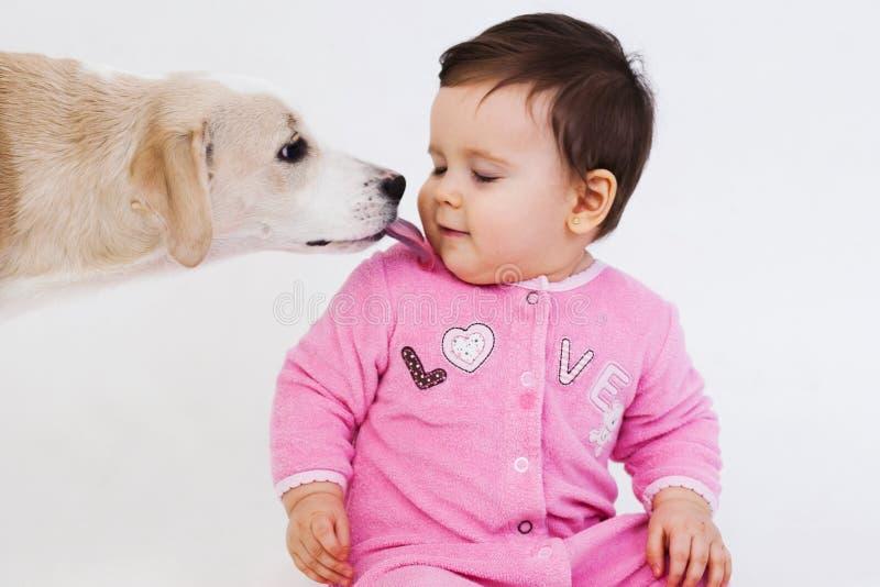 Σκυλί που γλείφει το πρόσωπο μωρών στοκ εικόνα