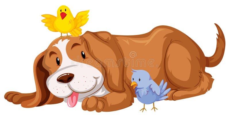 Σκυλί της Pet με δύο πουλιά διανυσματική απεικόνιση