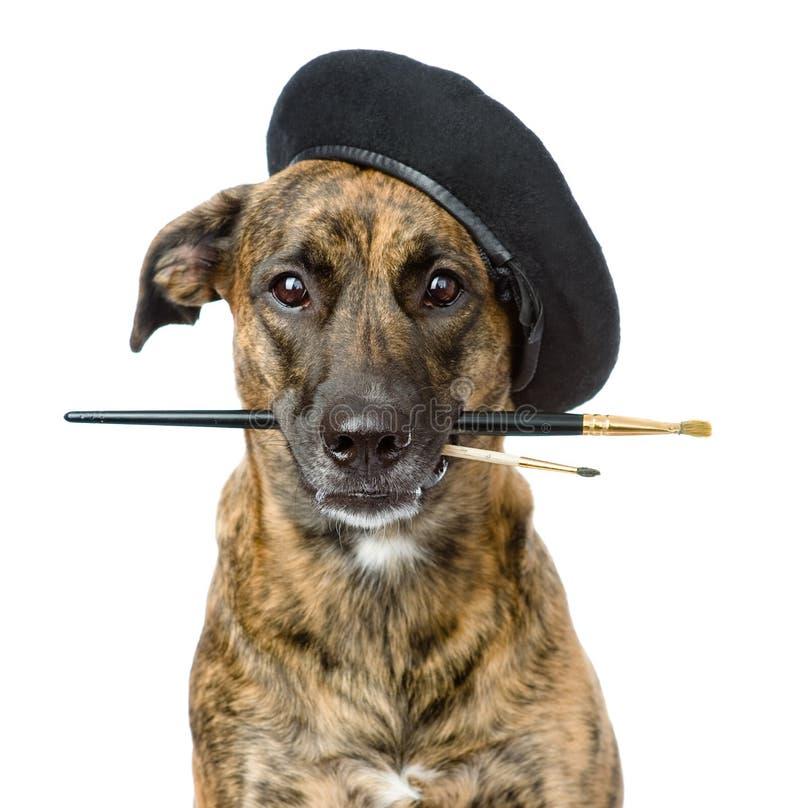 Σκυλί ως ζωγράφο με μια βούρτσα η ανασκόπηση απομόνωσε το λευκό στοκ φωτογραφία με δικαίωμα ελεύθερης χρήσης
