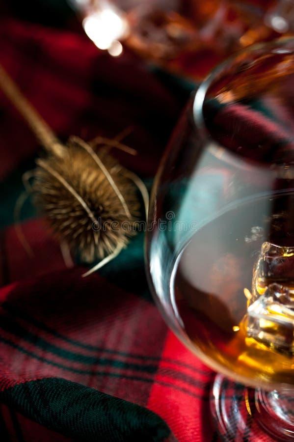 Σκωτσέζικο ουίσκυ σε ένα γυαλί στο υπόβαθρο ταρτάν στοκ εικόνες με δικαίωμα ελεύθερης χρήσης