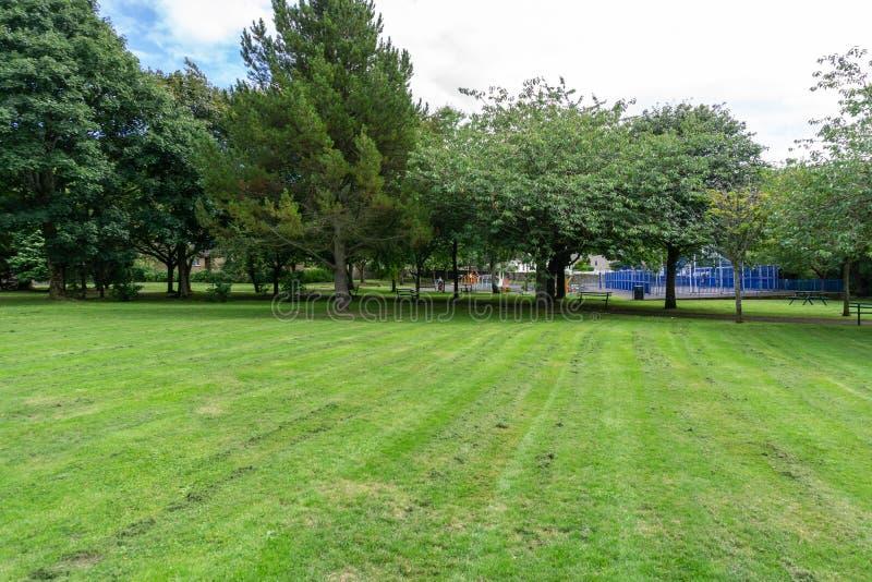 Σκωτσέζικο πάρκο το καλοκαίρι στοκ εικόνες